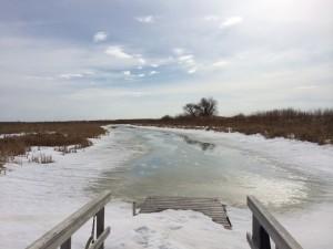 The marsh slowly melting